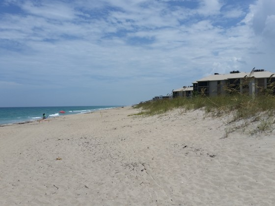<br>Martin County Beach Restoration</br>